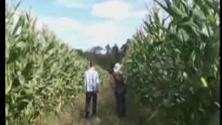 Fit blond playgirl screwed in a corn field